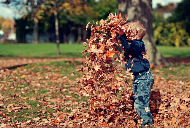 知っておいて欲しい幼児期の発達ポイント<発達障害 ADHD 子育て>