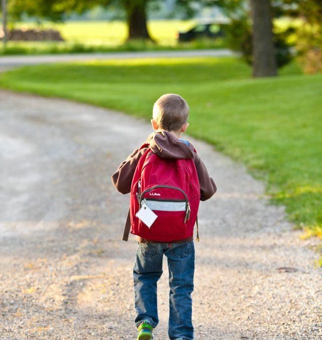 発達障害の子が小学校低学年を乗りきるためにやっておいて欲しいこと<発達障害 子育て>